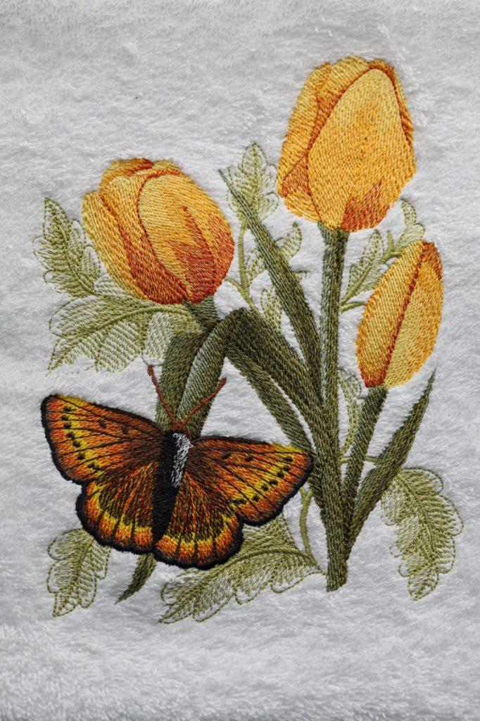tulips_butterfly