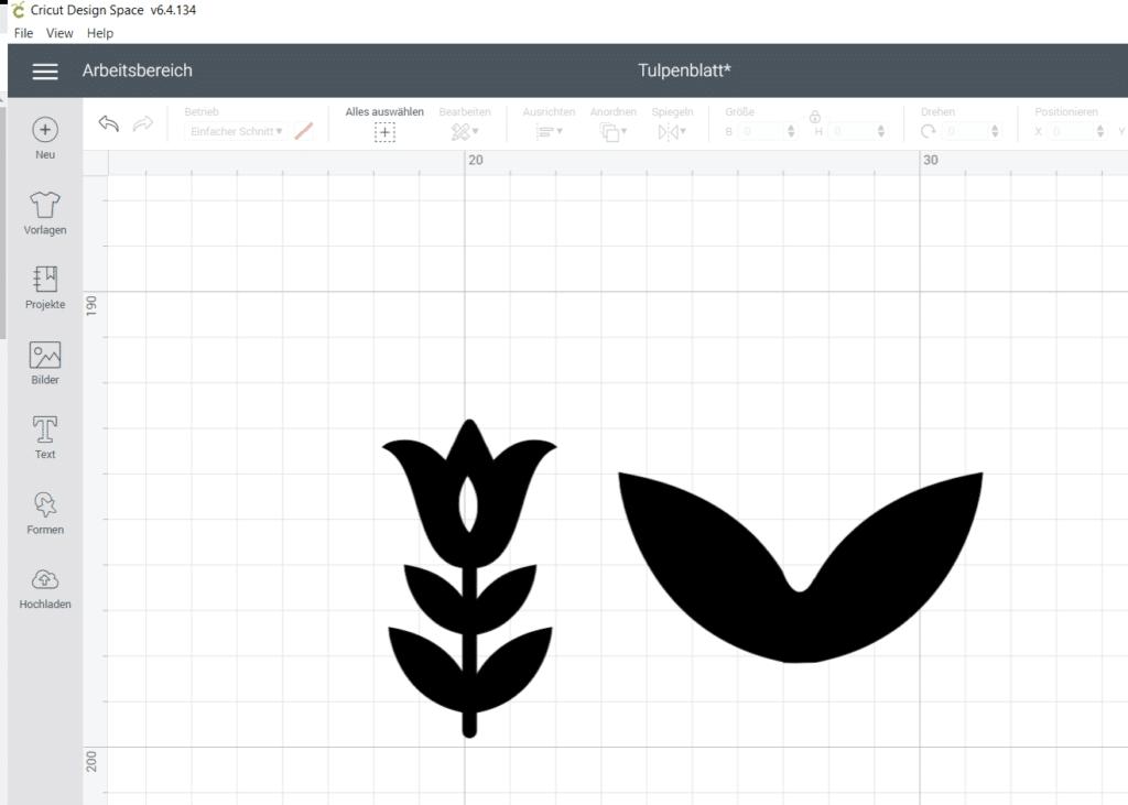 Design Space Blume
